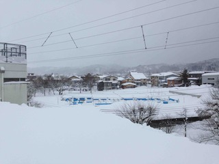 2018-01-26_seppiotosi1.jpg